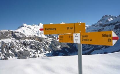 NEU: Skitouren über dem Kiental