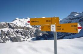 Skitouren über dem Kiental (Ski/Board) 4+1