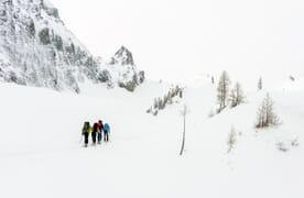 Skitour zum Wildhorn 3247m 4+1