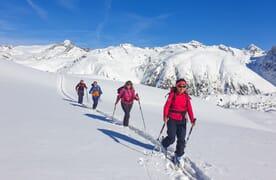 Skitouren im Schnee-Eldorado Goms