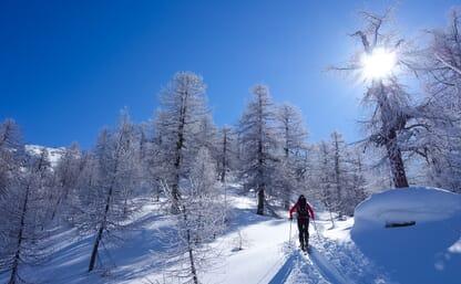Skitouren über dem Naturpark Binntal