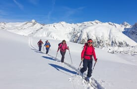 Skitouren im Schnee-Eldorado Goms 4+1