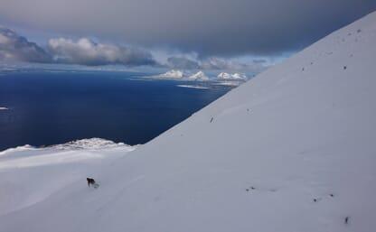 SKI & SAIL von Harstad zur Insel Senja und weiter bis Tromsö, Norwegen
