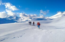 Grundkurs Schneeschuhtouren Flumserberge 4+1