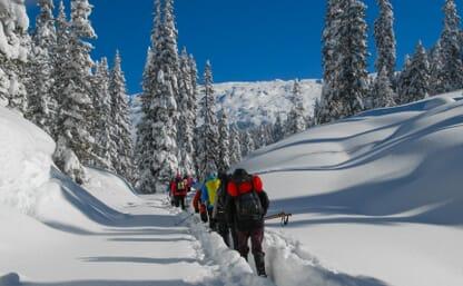 Schneeschuhtour Maienfelder Furgga 2434m