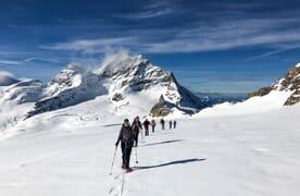 NEU: Schneeschuhtour Walcherhorn 3692m und Louwihorn 3777m
