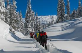 Schneeschuhtour Maienfelder Furgga 2434m 4+1