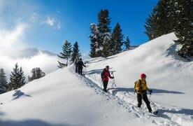Schneeschuhtouren und Yoga im Münstertal