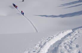NEU: Schneeschuhtouren rund um die Saoseohütte 4+1